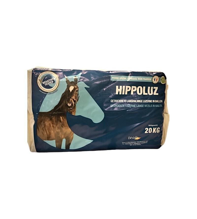 Sieczka z Lucerny HIPPOLUZ...